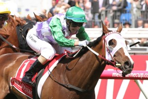 Prince Of Penzance, Melbourne Cup